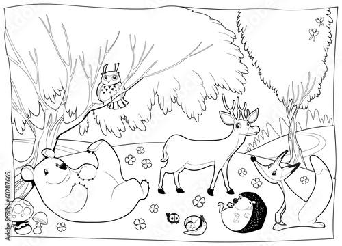 Раскраски животные в лесу распечатать