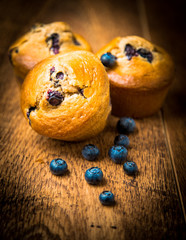 Wall Mural - Muffins with blueberry on wooded background