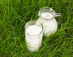 Glass and jug with fresh milk on green grass