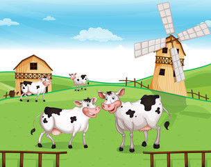 Cows at the hilltop with a windmill