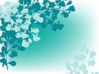 magnolia blossom branches blue silhouettes
