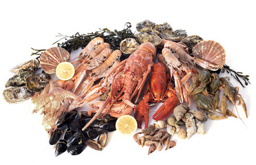 Canvas Prints Seafoods seafood
