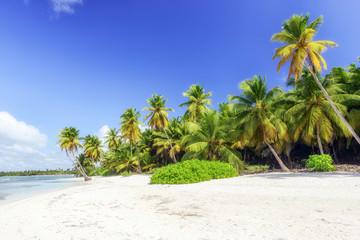 Recess Fitting Caribbean Caribbean wild beach, Punta Cana