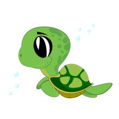 cute turtle swimming