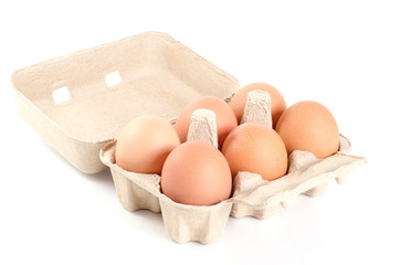 eggs in cardboard tray on white background with clipping path