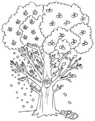 Coloring four seasons tree