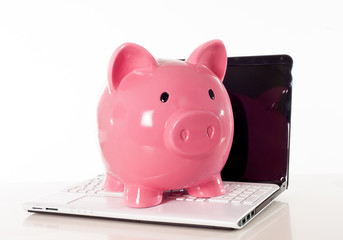 Pink Piggy Bank on a laptop on white background