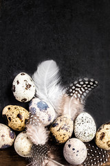 Quail eggs with white feathers on vintage black scratched backgr