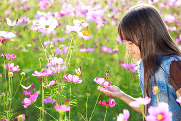 Little asian girl in flower fields