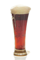 dark beer with the foam in a tall glass isolated on white