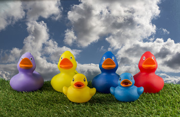 toy ducks and blue sky