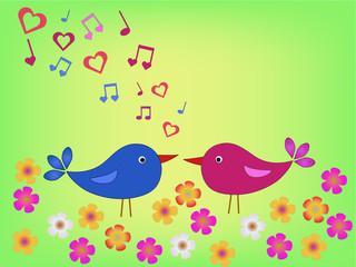 birds on meadow in love