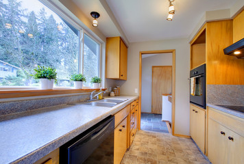 Modern kitchen with wide window