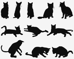 Black silhouettes of cats in resting poses, vector