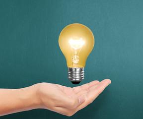 bulb light on a hand