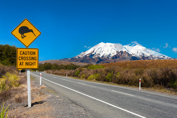 Aluminium Prints New Zealand Kiwi and mount Ruapehu