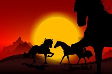 Wall Mural - Wild Mustangs Sunset