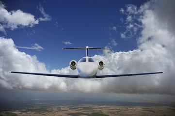 Executive in flight