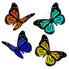 Illustration of different coloured butterflies