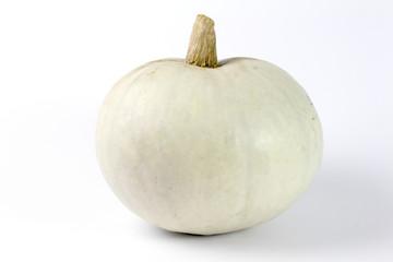 White pumpkin isolated on white