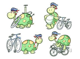cycling turtle on bike