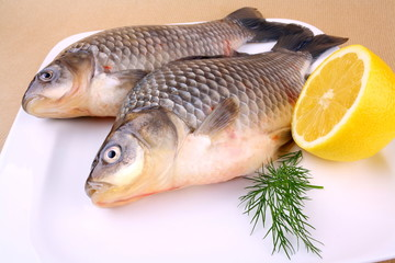 Two fresh carp on white plate with lemon