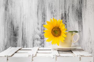 background still life flower sunflower wooden white vintage cup