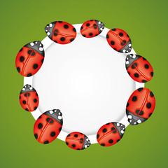 Ladybugs on round frame.