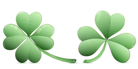 Four leaf clover and three leaf clover over white