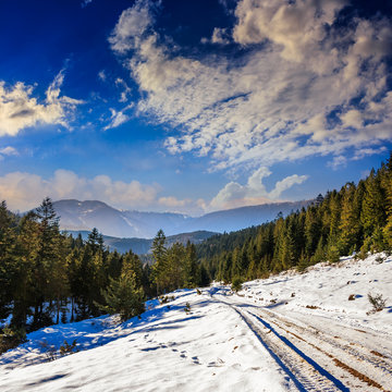 snowy road to coniferous forest in mountains