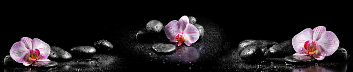 Foto op Plexiglas Orchidee Horizontal panorama with pink orchids and zen stones on black ba