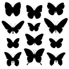 Schmetterlinge Vektor Silhouette