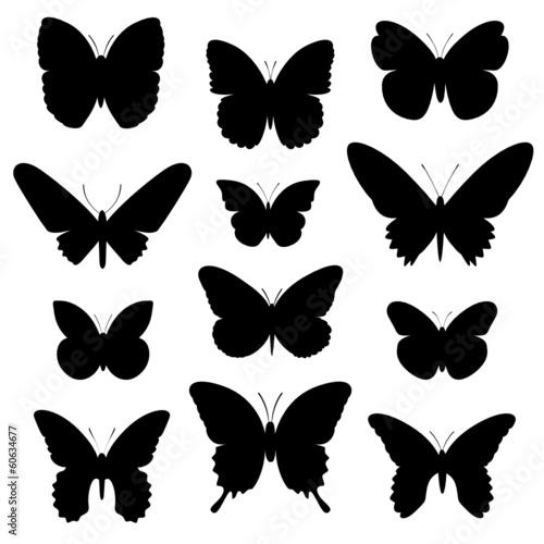"""""""Schmetterlinge Vektor Silhouette"""" Stockfotos und ..."""