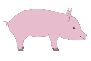 cartoon image of little pig