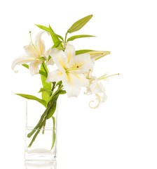Bouquet of white lilies in glass vase isolated on white
