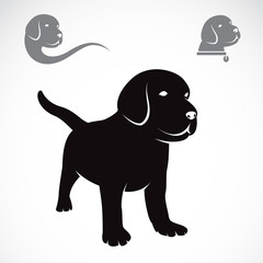 Vector image of an labrador puppies