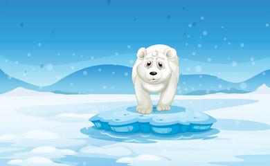 A sad polar bear standing above the iceberg