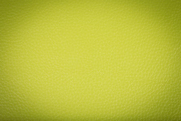 Green leather texture