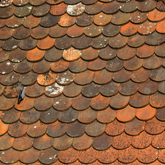 Medieval tiled roof texture.