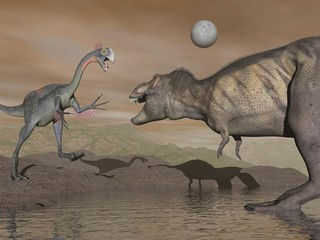 Gigantoraptor and tyrannosaurus - 3D render