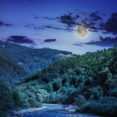 wild mountain river on a clear summer night