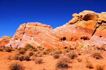 Fototapete - Vibrant patterned red rocks at Valley of Fire, Nevada, USA