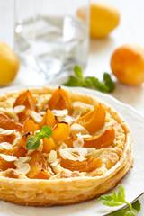 Apricot and Almond Tart