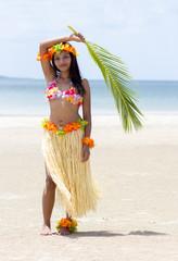 Hawaii Hula dancer on beach