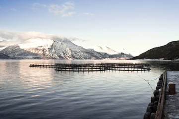 Salmon farms in Norway