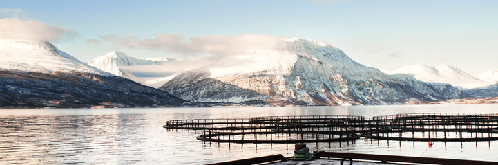 Fish farms in north Norway 3/1 Ratio