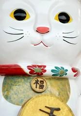Lucky cat belief of Japanese