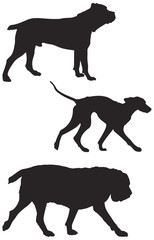 Dog breeds vector Silhouettes 5