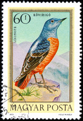 HUNGARY - CIRCA 1973: Postage stamp printed in Hungary showing R