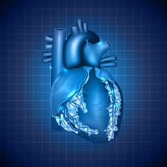 Human heart medical illustration, abstract blue design